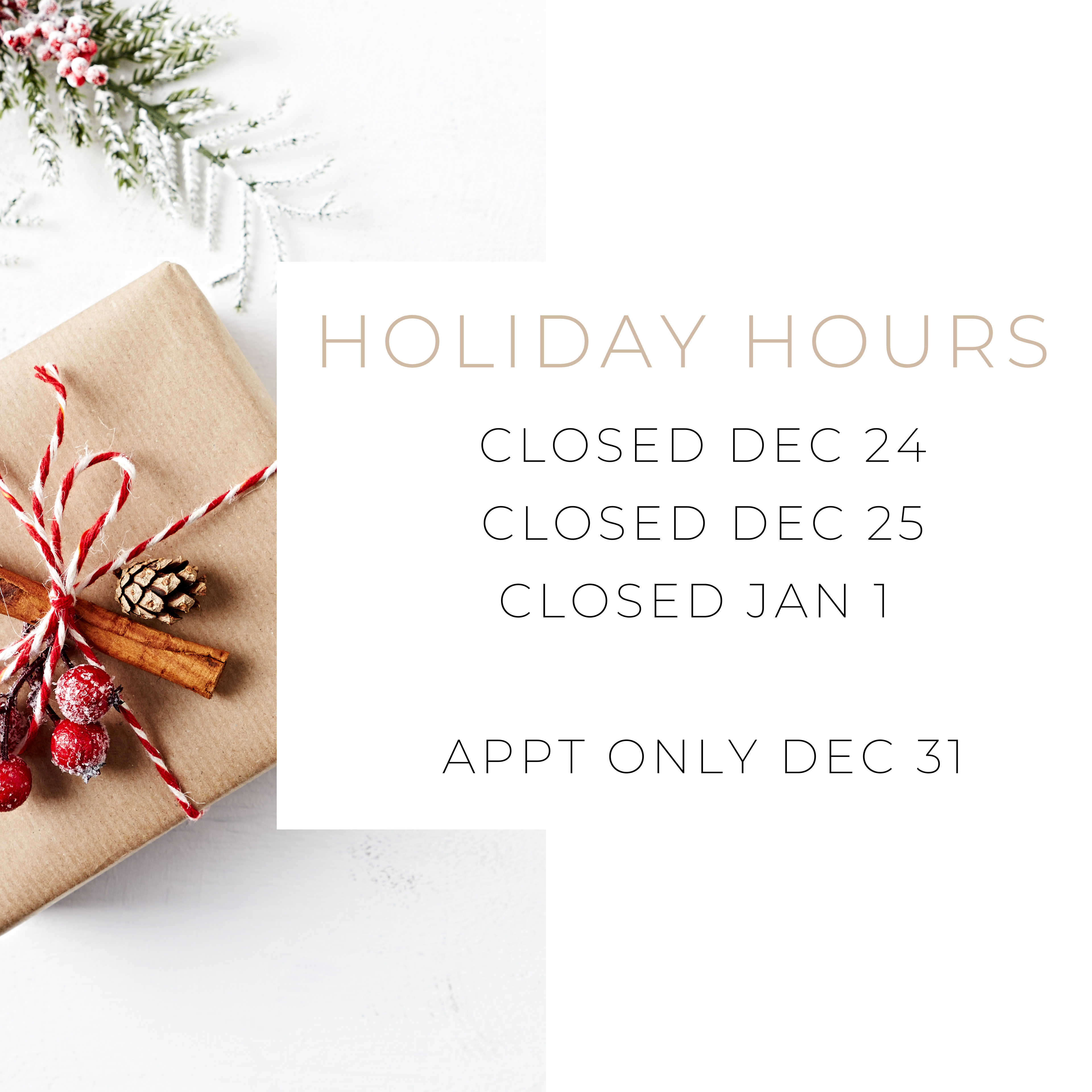 2020 Holiday Hours Image